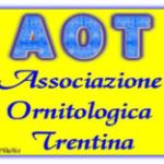 aot_logo_face.png